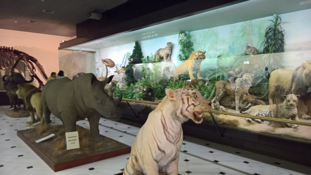 Μουσείο Φυσικής Ιστορίας Γουλανδρή