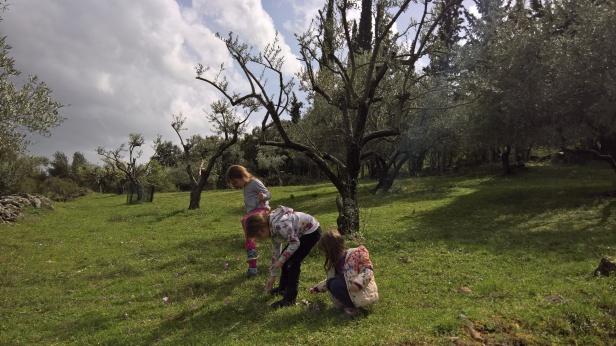 Αγία Ζώνη στο μονοπάτι γύρω από το αγρόκτημα Αμφίκαια