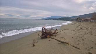 Παραλία Σκοτίνας με φόντο την Όσσα