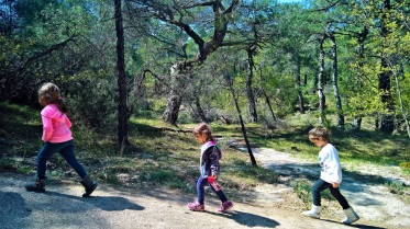Στο δάσος της Δαδιάς