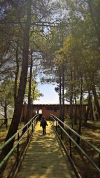 Στο Παρατηρητήριο του δάσους της Δαδιάς