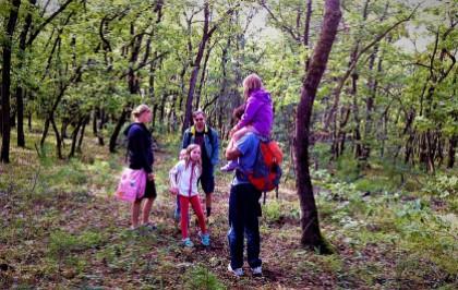 Δάσος Μογγοστού
