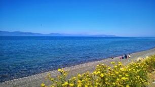 Παραλία Αλιλέα