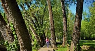 Πάρκο και πηγές Αγίας Βαρβάρας