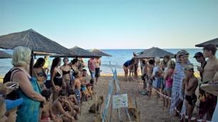 Αρχέλων-εκσκαφή φωλιάς στην παραλία Ζάγκα
